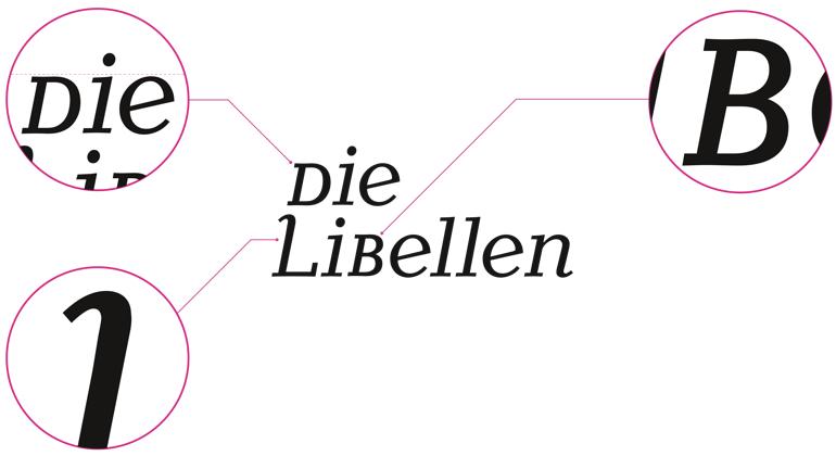 Proj_CMarschner_Libellen_LogoDetails